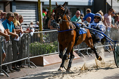 Day of the city (Julysha) Tags: horse horseraces summer thenetherlands noordholland august people d850 acr nikkor7020028vrii 2019