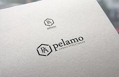 PA logo mockup (prdAKU) Tags: