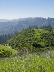 Windy Hill (2) (Teelicht) Tags: california hügel kalifornien nordamerika northamerica sanmateocounty usa unitedstatesofamerica vereinigtestaaten windyhill hill portolavalley
