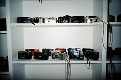Simple cameras (Matthew Paul Argall) Tags: kodakeasyload35ke60 35mmfilm kodakultramax400 kodak400 ultramax 400isofilm cameras shelves