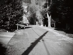 Sunset Avenue (2) (Matthew Paul Argall) Tags: jcpenneyelectronicstrobepocketcamera fixedfocus 110 110film subminiaturefilm lomographyfilm 100isofilm blackandwhite blackandwhitefilm road street