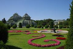 Palmenhaus, Schloss Schönbrunn, Wien (AWe63) Tags: palmenhaus schönbrunn schloss wien garten park pentax pentaxk1mkii cawe63