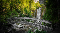 Woody Bridge, amazing forest and waterfall view (Romain Didier) Tags: