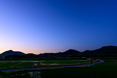 田舎の黄昏ー Dusk of the country (kurumaebi) Tags: yamaguchi 秋穂 山口市 nikon d750 nature landscape sunset 夕陽 dusk 田んぼ