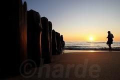 Urlauber bei Sonnenuntergang (Harde) Tags: sylt urlaub buhne sonnenuntergang sunset strand beach küste coast abend evening abendlicht light licht sonnenlicht sunlight dämmerung dawn himmel sky holiday horizont horizon sun sonne