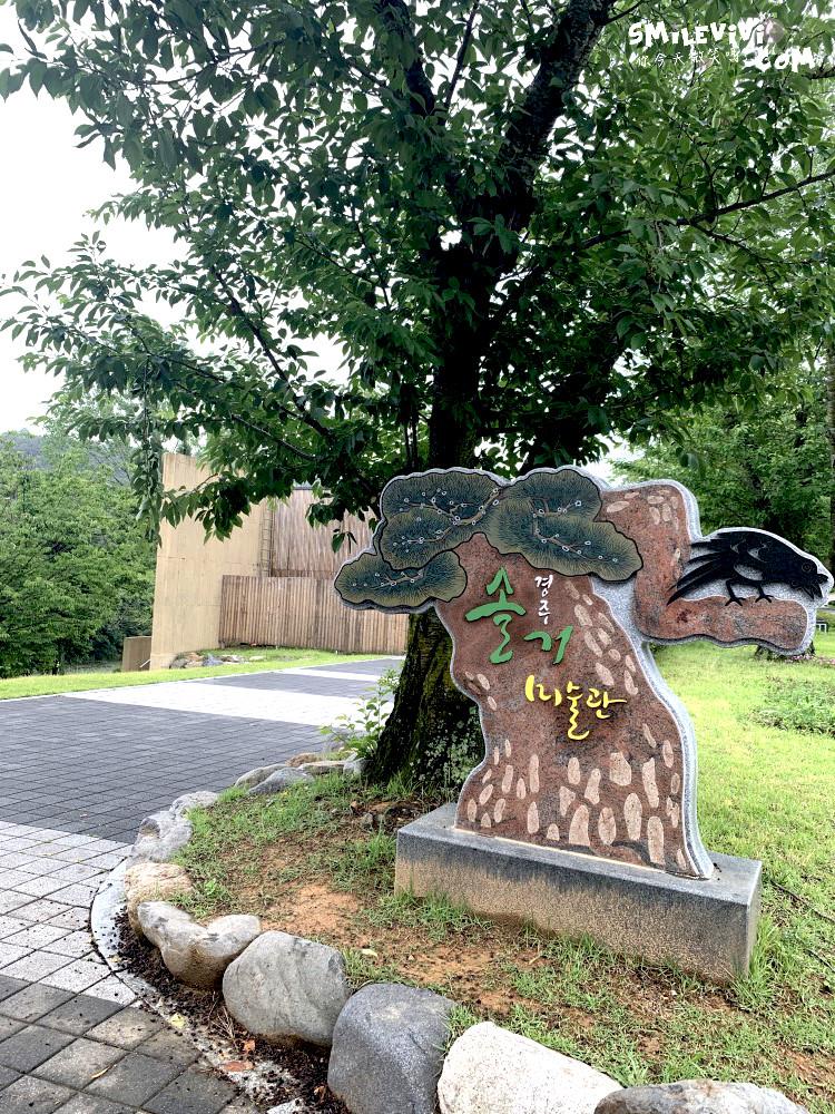 慶州∥慶州率居美術館(Gyeongju Expo Solgeo Art Museum;솔거미술관)感受一下藝術氣息眺望慶州塔(경주타워) 39 48501495312 1c272b6475 o