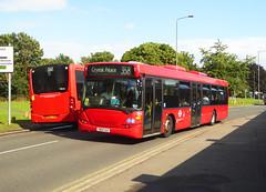 GAL 565 - YN08OAX - FARNBOROUGH HILL ORPINGTON - WED 7TH AUG 2019 (Bexleybus) Tags: goahead go ahead london metrobus mb bus garage orpington br6 farnborough hill kent mercedes citaro mec64 bf65hvg scania omnitown 565 yn08aox tfl route 358