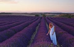 Bea en lavanda (explore 274) (pascual 53) Tags: eos1dmarkiii canon beatriz olite navarra campos lavanda aromas colores verano 50mm ocaso