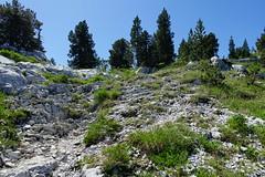 Plateau @ Hike to Parmelan (*_*) Tags: plateau parmelan bornes 2019 ete summer august afternoon hiking mountain montagne nature randonnee trail sentier walk marche europe france hautesavoie 74 annecy savoie limestone calcaire lapiaz pavement