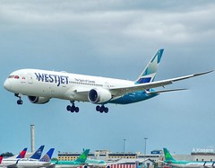 WESTJET B787 C-GUDH (Adrian.Kissane) Tags: aviation flight flying 787 boeing airline airliner aircraft aeroplane jet plane sky airport landing arriving dreamliner ireland outdoors cgudh 64974 1662019 b787 dublinairport dublin westjet