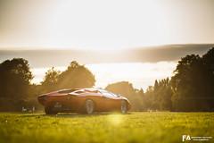 Lamborghini Countach - Concours Chantilly Arts et Elegance 2019 (Fast-Auto.fr) Tags: lamborghini lamborghinicountach countach classic car classiccar lambo concours elegance chantilly 2019 chantilly2019 artsetelegance
