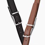 Smart Beltの写真