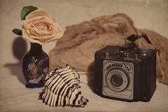 Still Life (DayBreak.Images) Tags: tabletop stilllife vase rose antique camera seashell black murex canondslr meyeroptic 50mm trioplan genaraytorpedo photoscape texture