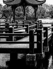 FloatingPath.jpg (Klaus Ressmann) Tags: omd em1 china hangzhou klausressmann threepools westlake winter acient architecture blackandwhite flicvarious footbridge pavilion omdem1 nnamoramento