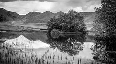 Bollihope . (wayman2011) Tags: colinhart fujifilmxf35mmf2 fujifilmxt1 lightroom5 wayman2011 bwlandscapes mono rural reflections water trees spoilheaps quarrys pennines dales weardale countydurham uk