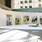 メンタルヘルスに関する啓発イベントの写真