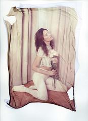 Jelena (Braca Nadezdic) Tags: analog polaroid8x10 polaroid809 emulsionlift largeformat sinar model