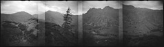 The Langdales from Side Pike (Mark Rowell) Tags: diana ilford delta langdalepikes sidepike dungeonghyll bw blackandwhite 120 mediumformat panoramic expired film