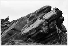 _DSC2490-Enhanced (alexcarnes) Tags: ramshaw rocks leek staffordshire roaches alex carnes alexcarnes nikon d850 nikkor 50mm f18d