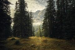 (-libellenwellen-) Tags: alpen alps austria österreich tirol landschaft landscape natur nature berge mountain europa sony a7 zeiss 1635