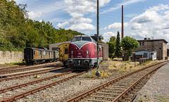 BR V 200 Diesellok (nbrausse) Tags: deutschland nrw bochum v200 diesellokomotive 201908 eisenbahnmuseumbochum eisenbagnfreunfe