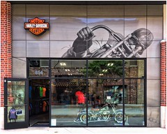 HARLEY-DAVIDSON MOTORCYCLES Apparel Store The Battery Atlanta (steveartist) Tags: stores signs graphics illustration logos motorcycle harleydavidson reflections storefront thebattery atlantaga photostevefrenkel snapseed iphonese
