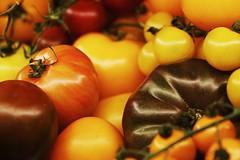 Heirloom Tomatoes (just.Luc) Tags: tomatoes tomates tomaten pomodori yellow geel jaune gelb giallo amarillo