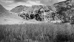 Bollihope . (wayman2011) Tags: colinhart fujifilmxf35mmf2 fujifilmxt1 lightroom5 wayman2011 bwlandscapes mono rural quarrys pennines dales weardale countydurham uk