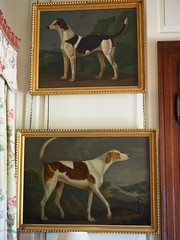 P7040586 (simonrwilkinson) Tags: antonyhouse nationaltrust antony cornwall painting sartorius hounds