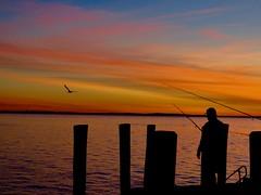 Last Catch of the Day ? (ISO 69) Tags: sunset sun fraserisland sonnenuntergang queensland australia night evening fisherman fishing seagull australien insel island sonne beautiful beauty jetty fish abend abenstimmung fischen explore inexplore