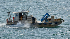 Barge ostréicole à l'entrée du Golfe du Morbihan (Port Navalo) (ijmd) Tags: france morbihan golfedumorbihan presquîlederhuys bateau boat portnavalo