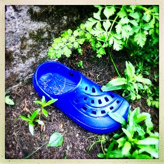 One careless owner (Julie (thanks for 8 million views)) Tags: smileonsaturday shoeshow shoe abandoned blue clog squareformat hipstamatic app hipstamaticapp iphonese campile 100xthe2019edition 100x2019 image74100 croc wexford ireland irish fun lost