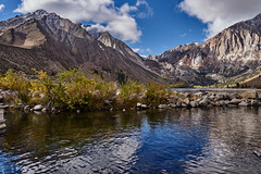 …..in Morning Light (AgarwalArun) Tags: sony a7m2 sonyilce7m2 landscape scenic nature views easternsierra bishopca lakes leaves autumn fallfoliage mountains inyonationalforest convictlake