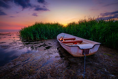 A boat and a sunset... (dannygreyton) Tags: fujifilmxt2 fujifilm fujifilmxseries boat grass water sunset sea ocean sweden bjärred lomma colorful europe oar rowingboat