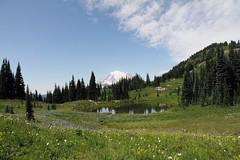 Tarn, Mount Rainier National Park (jlcummins) Tags: mountrainiernationalpark washingtonstate nachespeaklooptrail chinookpass hike piercecounty meadow flowers nature mountain