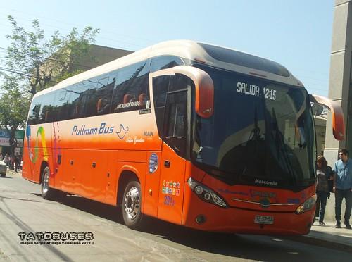 ← Buses Pullman Bus ©→