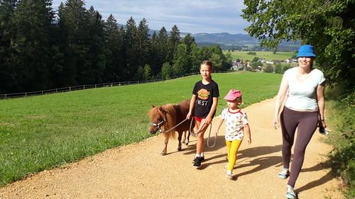 Pony spazieren
