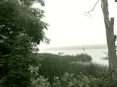 beautiful aloneness (77ahavah77) Tags: maine kennebec river water landscape outside alone aloneness solitary quiet quietness silence silent nature fog morning