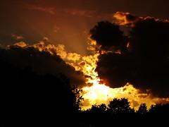 sunset (fleckchen) Tags: sonnenuntergang sonnenuntergänge sonnenstrahlen sunset sun sunsets himmel sky abendstimmung abend abenddämmerung eveningmood evening