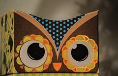 Cardboard Owl (ACEZandEIGHTZ) Tags: cardboard paper art nikond3200 artsandcrafts eyes