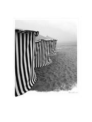 Quiaios, 2019. (ithyrsus) Tags: smartphone huawey affinityphoto praiadequiaios quiaios beiralitoral portugal europa europe eu ue bw blackwhite bnw blancoynegro blackandwhite biancoenero schwarzweis praia playa beach chapeusdepraia sombrillas