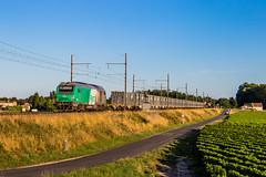 08 août 2019 BB 75415 Train 466760 Tonneins -> Bordeaux-Hourcade Barsac (33) (Anthony Q) Tags: 08 août 2019 bb 75415 train 466760 tonneins bordeauxhourcade barsac 33 sncf bb75000 bb75400 ferroviaire fret desserte bb75415 gironde aquitaine nouvelleaquitaine
