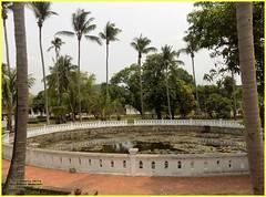 Luang Prabang Royal Pond 20190512_104034 DSCN5566 (CanadaGood) Tags: asia seasia asean laos ເມືອງລາວ luangprabang tree palace palmtree pond lily canadagood 2019 thisdecade color colour