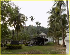 Luang Prabang Palace View 20190510_083124 DSCN5405 (CanadaGood) Tags: color colour building asia seasia laos asean luangprabang 2019 canadagood ເມືອງລາວ thisdecade tree architecture garden temple palace palmtree
