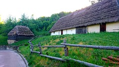 Ukrainian old fashioned houses (zenziyan) Tags: ukraine kyiv kiev pyrohiv culture traditional houses green village folk house straw roof building architecture ancient wood tree forest natural nationalpark jungle leave palm barn