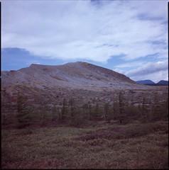 (✞bens▲n) Tags: hasselblad 500cm provia 100f carl zeiss 80mm f28 film positive mountains gunma japan shirane nature