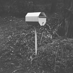 Letterbox (Matthew Paul Argall) Tags: 120film 120 mediumformat blackandwhite blackandwhitefilm ilforddelta100 100isofilm squareformat squarephoto 6x6 letterbox