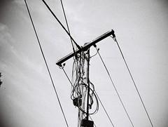 Power lines pole (Matthew Paul Argall) Tags: jcpenneyelectronicstrobepocketcamera fixedfocus 110 110film subminiaturefilm lomographyfilm 100isofilm powerlines powerlinespole