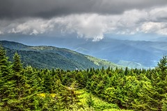 View from Mt. Mitchell (esywlkr) Tags: mtmitchell nc northcarolina landscape sky clouds forest trees ncstatepark