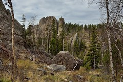 So There I Was Driving Along the Needles Highway...and I Had to Stop! (Custer State Park)